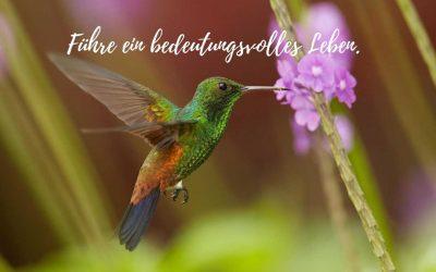 Führe ein bedeutungsvolles Leben!